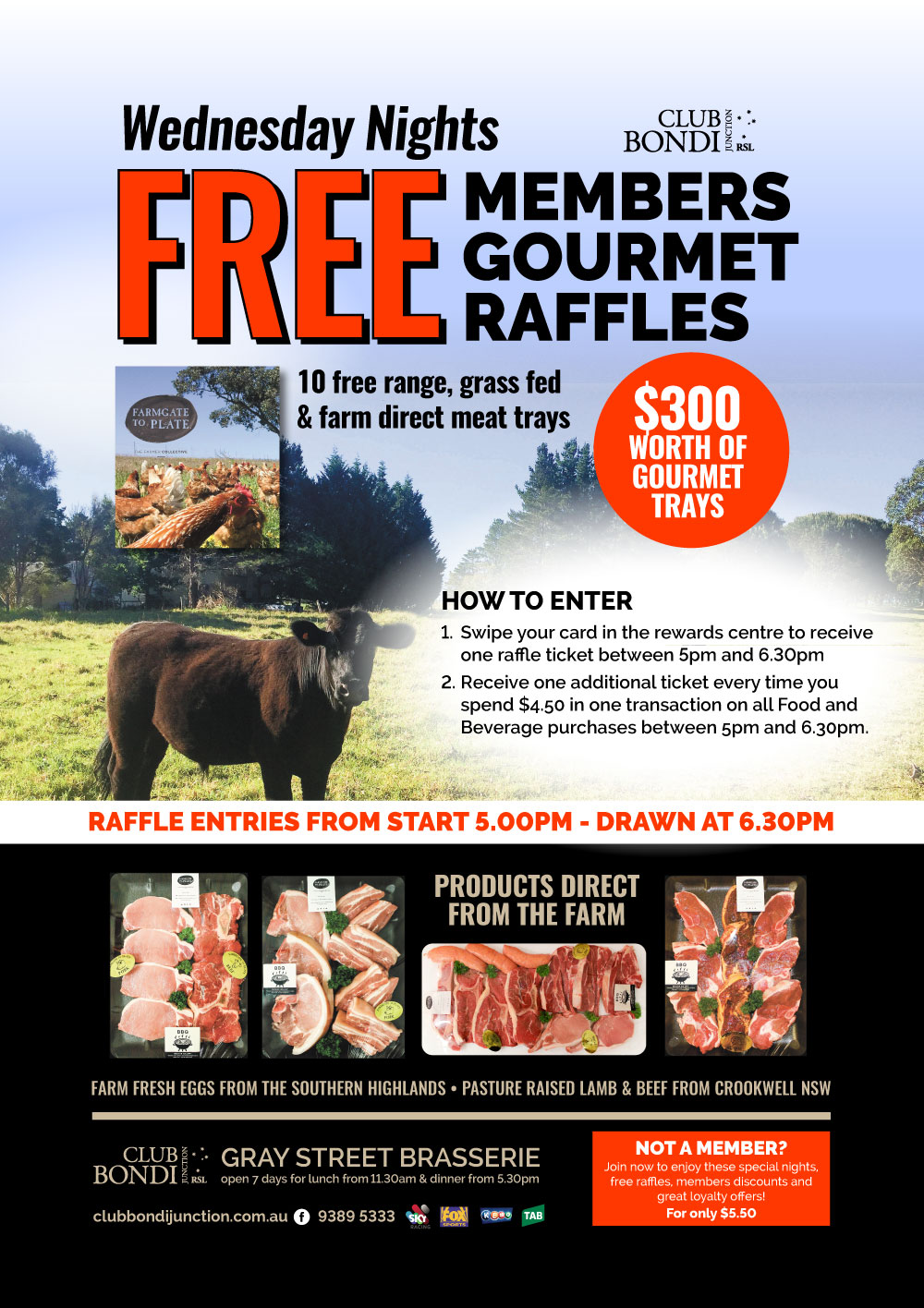 Club Bondi Junction RSL Raffles